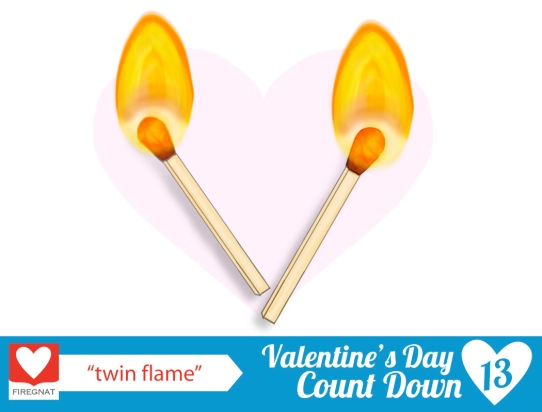 noun submitted: twin flame