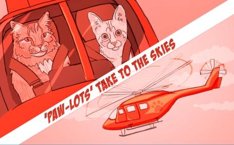 flyingCats_isolated