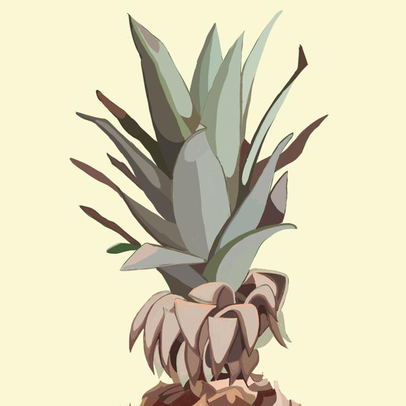 pineapple_featureImage