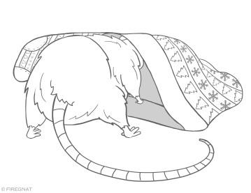 rat_04